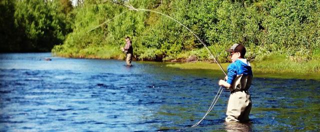 Fiskekort